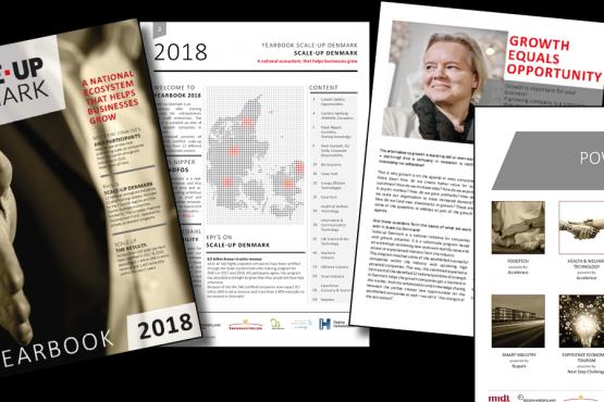 Hvem er de mest skalerbare virksomheder i Dannmark? Se i Scale-Up Denmark Yearbook 2018