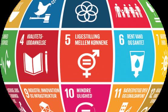 FNs Verdensmål giver forretning til danske virksomheder